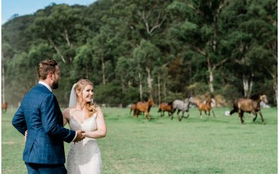 Glenworth Valley wedding – A new review